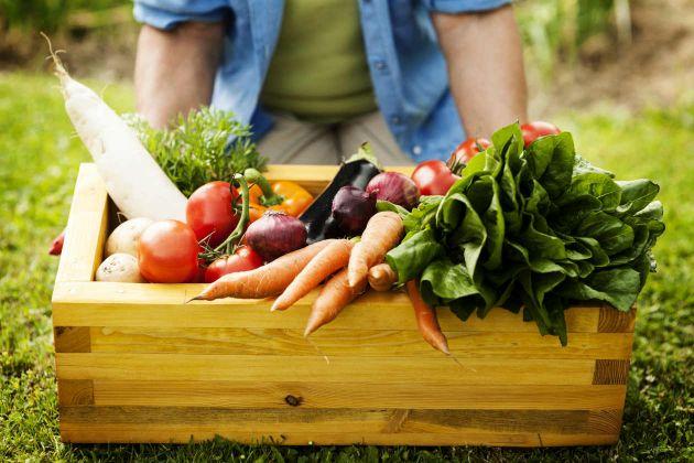 Colheita de vegetais
