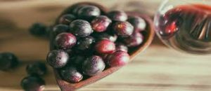 resveratrol uvas