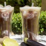 5 Receitas de Suco de Berinjela com Gengibre - Benefícios e Como Fazer