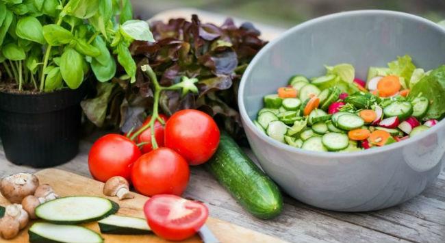 Refeição vegetariana
