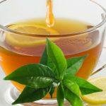 Chá de Folha de Limão - Para Que Serve, Benefícios e Como Fazer