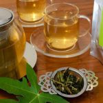 Chá de Folha de Mamão Emagrece? Para Que Serve, Benefícios e Como Fazer