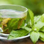 10 Benefícios do Chá de Menta - Para Que Serve, Como Fazer e Dicas