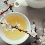 13 Benefícios do Chá Branco - Para Que Serve e Propriedades