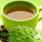 10 Benefícios do Chá de Graviola - Para Que Serve, Contraindicação e Como Fazer