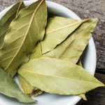 Folha de Louro Emagrece? Para Que Serve e Benefícios