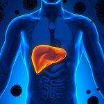 Limpeza do Fígado Natural - O Que Fazer?