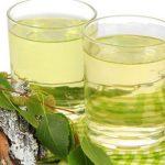 Chá de Bétula - O Que é, Para Que Serve e Benefícios
