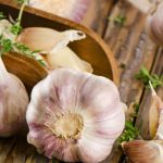 5 Melhores Alimentos Antifúngicos