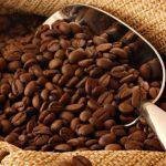 O Que é Café Orgânico? Benefícios e Diferenças