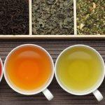 4 Chás para Pedra na Vesícula - Como Fazer e Dicas