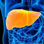 O Que Faz Mal ao Fígado? Alimentos, Remédios e Mais