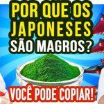 Por Que os Japoneses São Magros? Como Copiá-los?