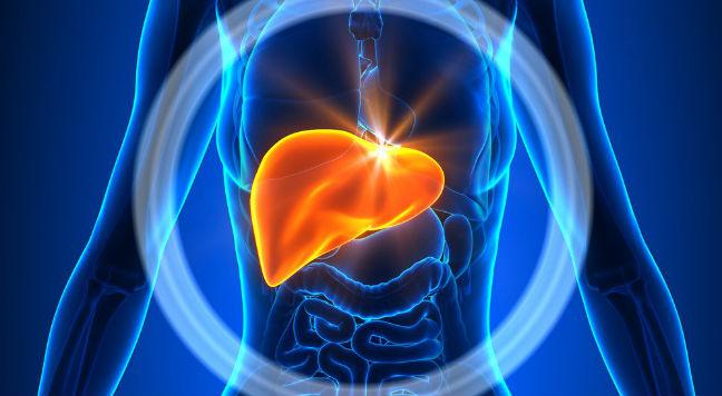 Fígado inchado