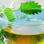 Chá de Alfavaca Emagrece? Para Que Serve? Dá Sono?
