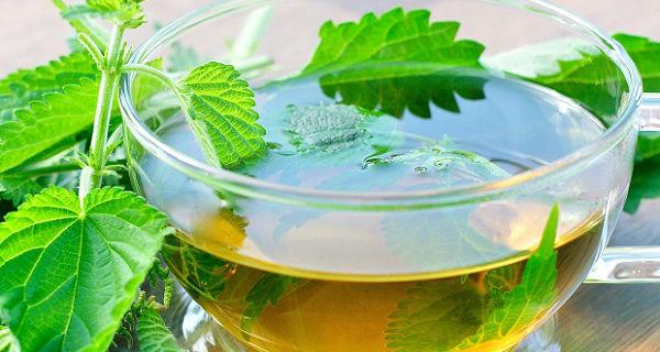 Chá de alfavaca