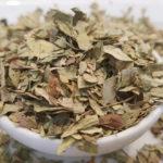 Chá de Sene Faz Mal? Para Que Serve, Como Tomar, Fazer e Efeitos Colaterais