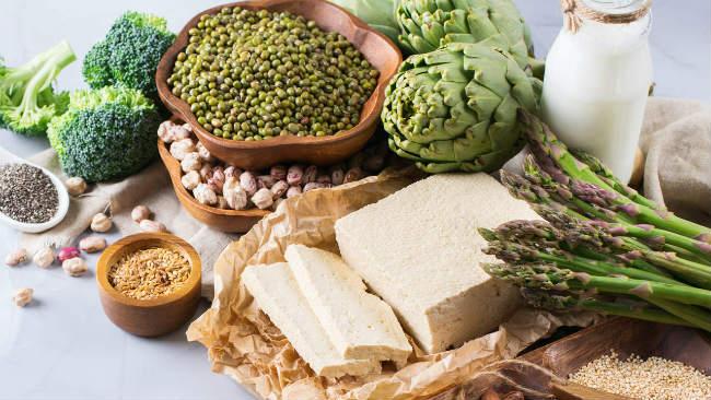 Proteínas vegetais