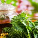 Chá para os Rins - 4 Melhores, Como Fazer e Dicas