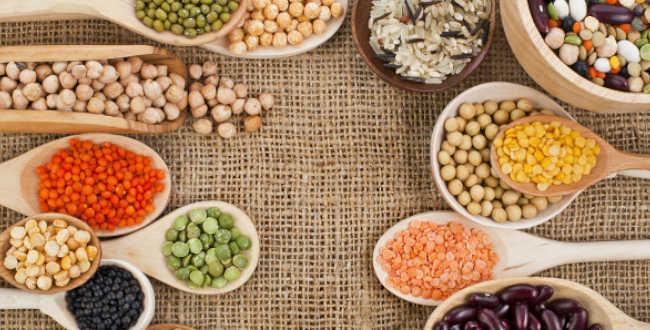 proteína vegetal para musculação