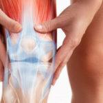 Lesões do Menisco - Tipos, Tratamento e Cirurgia