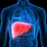 Gordura no Fígado Grau 1 é Perigoso? Sintomas e O Que Fazer