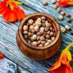 Capuchinha - Benefícios, para que serve e receitas