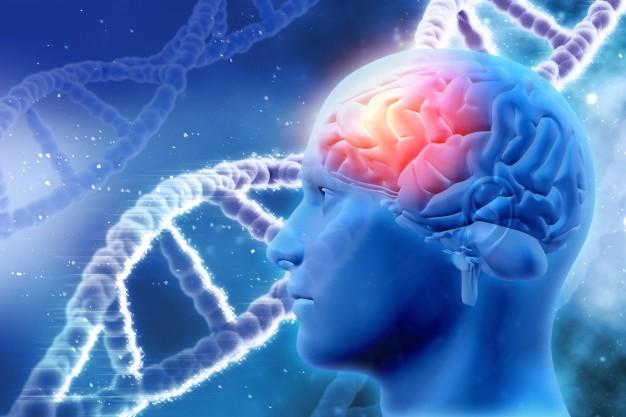 omega 3 bom para cérebro