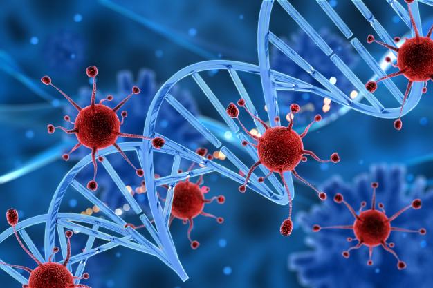 radicais livres e estresse oxidativo