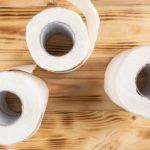 rolos de papel higiênico