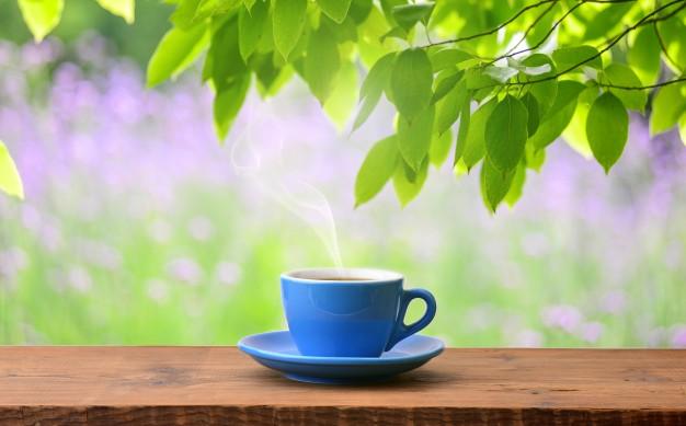 Chá da planta peixinho